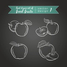 Apple. Vector Hand Drawn Collection Of Sketch Fresh Fruits Illustration On Blackboard. Isollated
