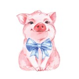 Funny pig and blue bow. Isolated on white. Cute watercolor illustration - 170537440