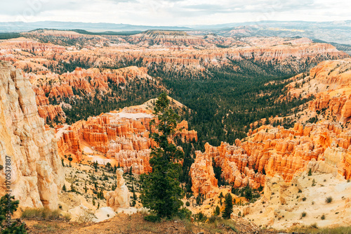 Tuinposter Canyon amazing view of bryce canyon national park, utah