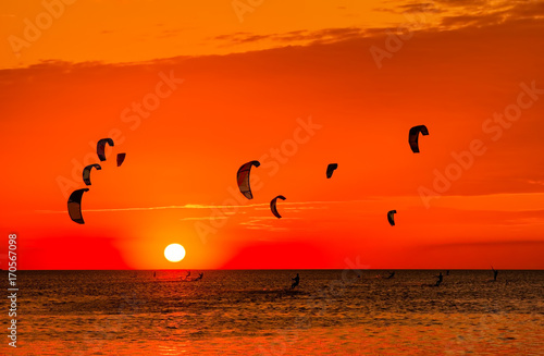 Rouge Kite-surfing against a beautiful sunset. Many silhouettes of kites in the sky. Holidays on nature. Artistic picture. Beauty world.
