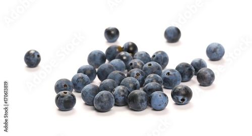Fotografie, Obraz Fresh blackthorn berries pile, prunus spinosa isolated on white background