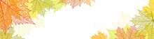 Nature Banner With Autumn Leav...