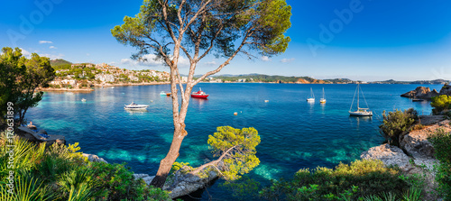 Idyllic panorama island scenery of bay with boats at Cala Fornells on Majorca is Canvas Print