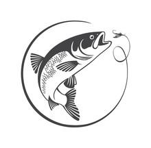 Fish Chub
