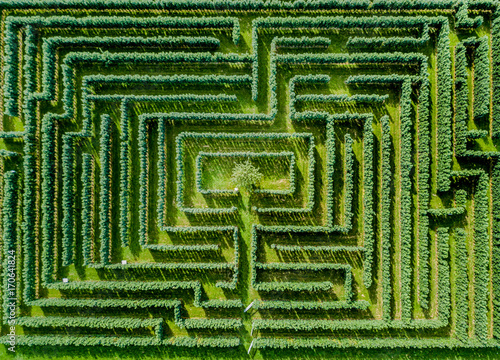 Slika na platnu Aerial view of maze made of trees and bush