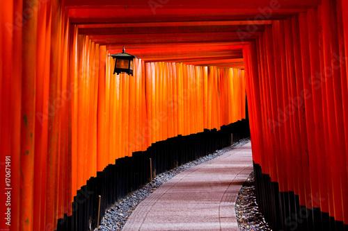 pomaranczowy-tunel