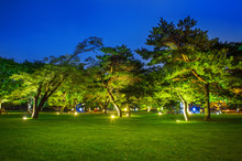 Park At Night.