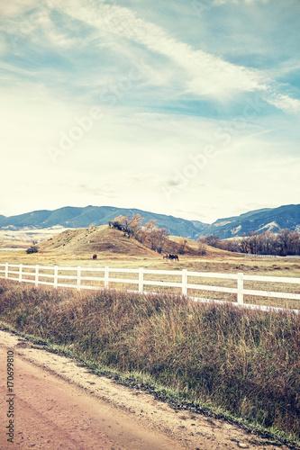 Foto op Aluminium Zalm Retro stylized picture of a countryside landscape