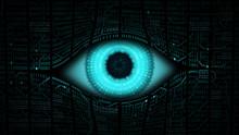Big Brother Electronic Eye Con...