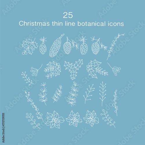 Photo Set of 25 Christmas botanical symbols.