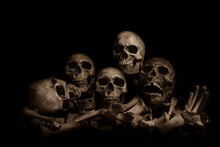Awesome Pile Of Skull Human And Bone On Wooden, Black Cloth Background. Still Life Style, Selective Focus,