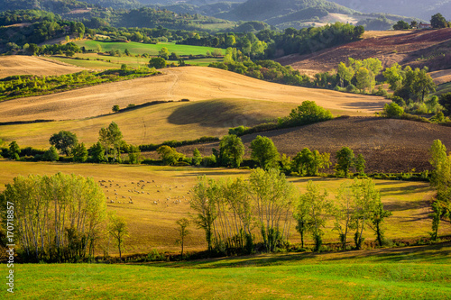 Recess Fitting Panorama Photos Stunning beautiful landscape view of Tuscany fields at Barberino di Mugello in the Italian region Tuscany in summer