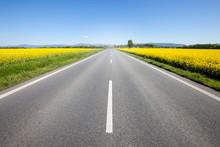 Asphalt Road Among The Summer ...
