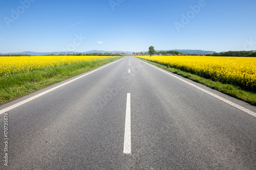 Fototapeta Asphalt road among the summer field obraz