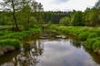 Mała rzeka wijąca się wśród nich