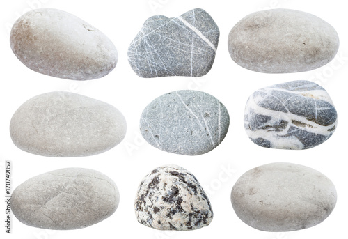 Obraz set of various gray natural sea pebble stones - fototapety do salonu