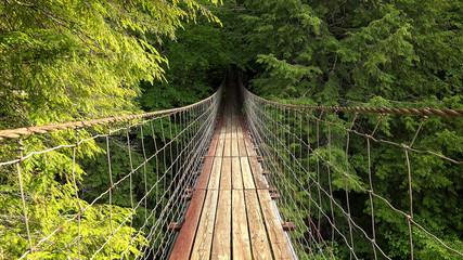 FototapetaWalking Across Suspension Bridge POV at Fall Creek Falls, Tennessee