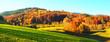 Leinwanddruck Bild Wald im Herbst - Abendsonne