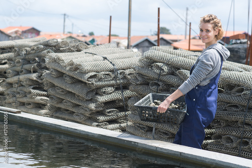 Photo worker in oyster farm collecting cages with oysters