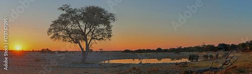 Staande foto Afrika Elefanten am Wasserloch im Etosha-Nationalpark in Namibia, Afrika im Sonnenuntergang