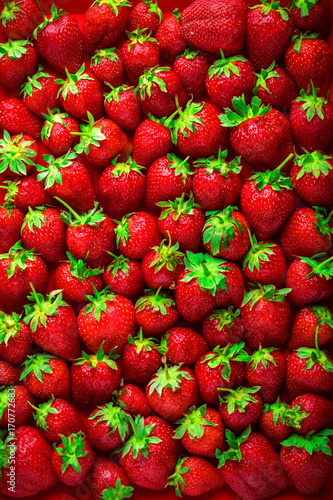 strawberries-background-overhead-colorful-large-group-in-studio