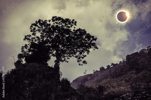 Foto op Aluminium Aubergine Scientific natural phenomenon. Total solar eclipse glowing on sky.