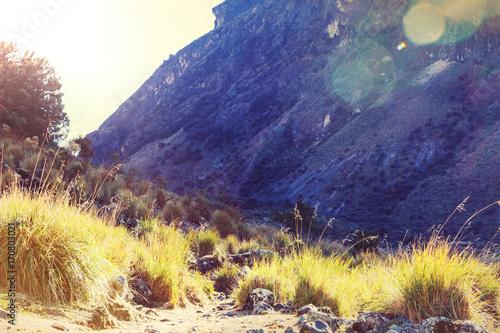 Fotobehang Zwavel geel Cordillera