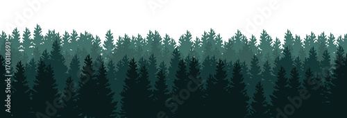 fototapeta na szkło Silhouettes of trees in the forest on white background - seamless vector panorama