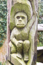 Monkey Carved On The Wood