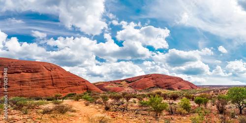 Printed kitchen splashbacks Australia Australien Outback