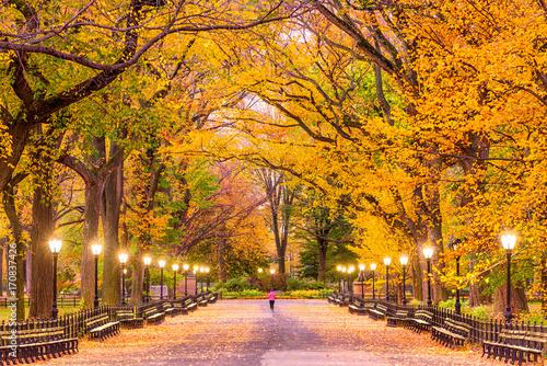 Staande foto New York City Central Park Autumn
