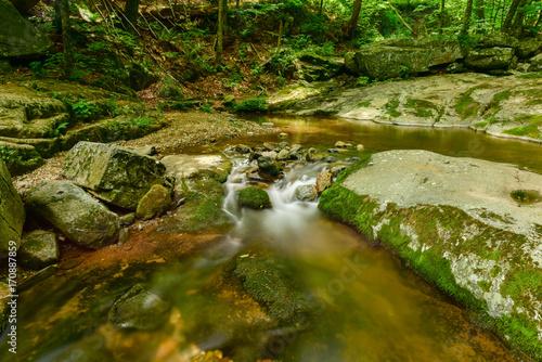 Fototapety, obrazy: Shenandoah National Park - Virginia