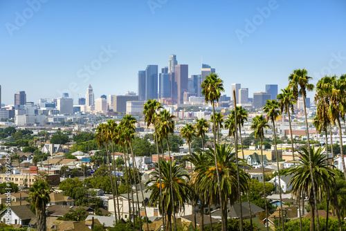 Photo  Los Angeles, California, USA downtown skyline and palm trees in foreground