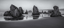 Early Morning In Bandon