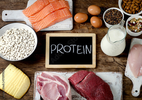 Best Foods High in Protein