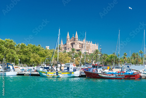 Poster Lieu d Europe View of Palma de Mallorca with Cathedral La Seu and the fishing port - 5901