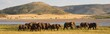 canvas print picture - Elephant herd in beautiful surroundings