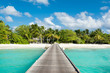 BWooden bridge to beautiful sandy beach under the shade of palms and tropical plants, Maldives