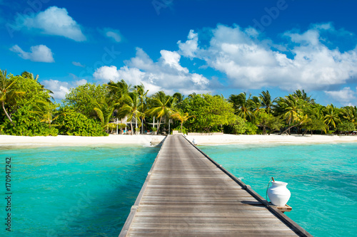Photo Stands Tropical beach Wooden bridge to beautiful sandy beach under the shade of palms and tropical plants, Maldives