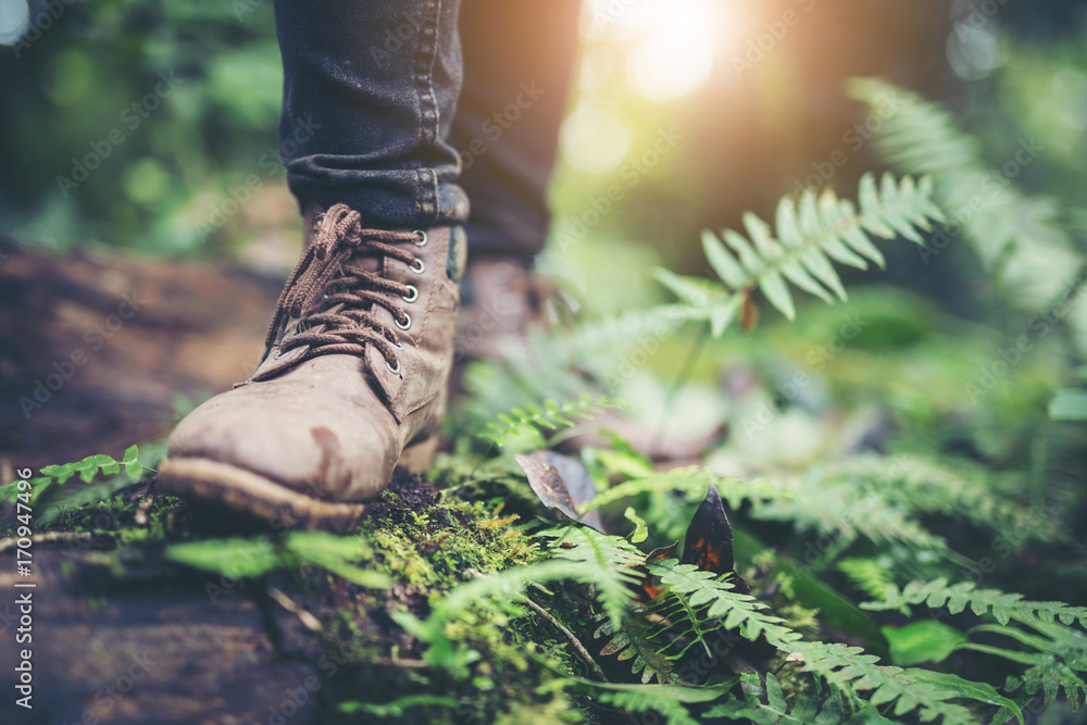 Fototapety, obrazy: Shoes Man walking on a forest path in autumn and Lifestyle hiking concept.