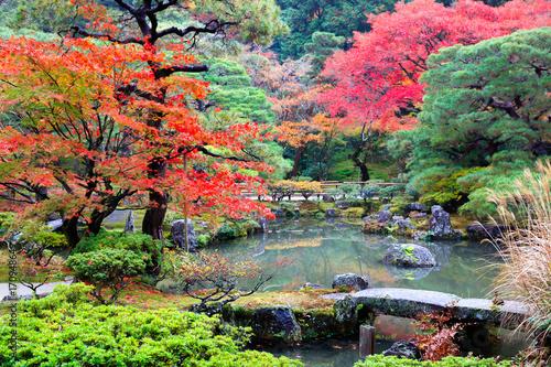 Foto op Canvas Zen Autumn landscape autumn leaves at Japanese garden, Kyoto Japan