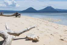 Beach Near Rabaul Papua New Gu...