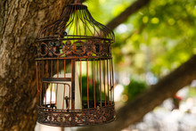 Vintage Wedding Decorative Birdcage With Candles On Natural Background