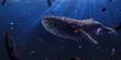 Garbege whale underwater Environmental problem of plastic rubbish pollution in ocean