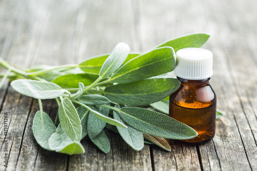 Fototapety, obrazy: Bottle of essential sage oil.