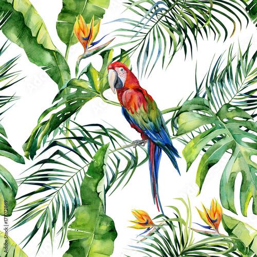 bezszwowa-akwareli-ilustracja-tropikalni-liscie-zwarta-dzungla-szkarlatna-ary