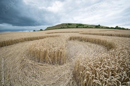 Fotografie, Obraz  Crop circle at Warminster, Wiltshire, England, ground level view