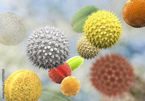 Pollen grains from different plants, 3D illustration Wallpaper Mural