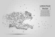 Abstract Image Of Cheetah Made Of Dots, Points And Mash Lines On White Background With An Inscription. Business Net Speed Vector Illustration. Polygonal, Geometry Triangle. Low Poly Background.