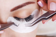 canvas print picture - Eyelash Extension Procedure. Woman Eye with Long Eyelashes. Lashes, close up, macro, selective focus.